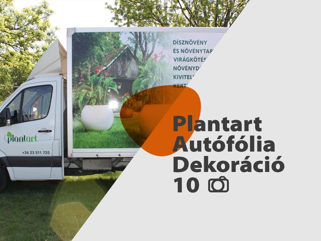 Plantart_nyito